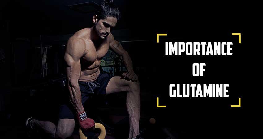 Importance of Glutamine